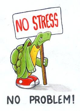 image drole no stress
